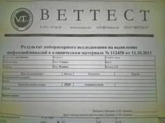 http://s5.uploads.ru/t/Emul5.jpg