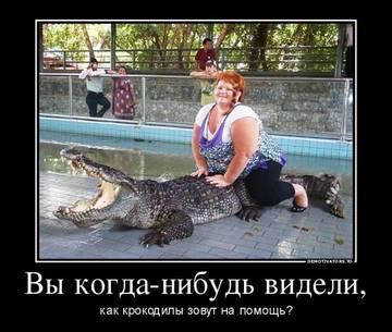 http://s5.uploads.ru/t/Ezn1T.jpg