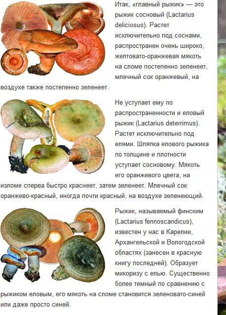 http://s5.uploads.ru/t/FLBjl.jpg