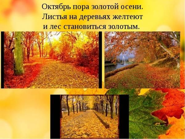 http://s5.uploads.ru/t/G6OaK.jpg