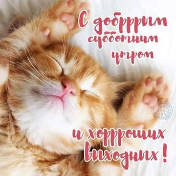 http://s5.uploads.ru/t/GS8Xt.jpg