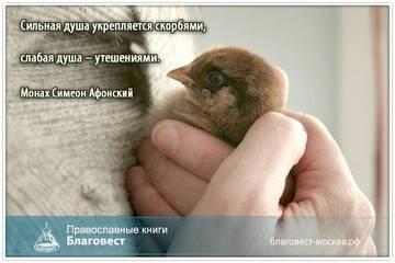 http://s5.uploads.ru/t/HcW2k.jpg