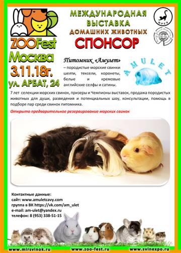 http://uploads.ru/Hfn2A.jpg