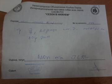 http://s5.uploads.ru/t/HwOna.jpg