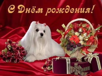 http://s5.uploads.ru/t/Ikyz6.jpg