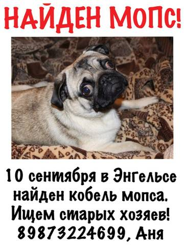 http://s5.uploads.ru/t/J3i2Q.jpg