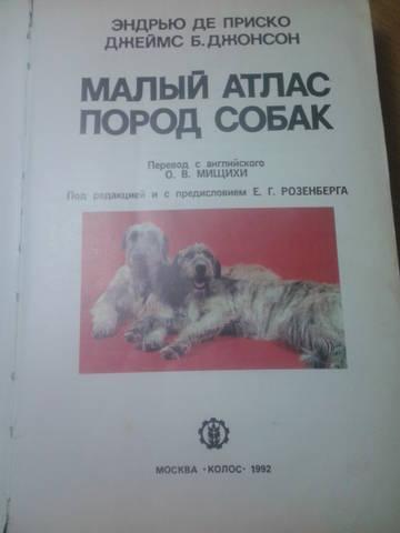 http://s5.uploads.ru/t/JDzfh.jpg
