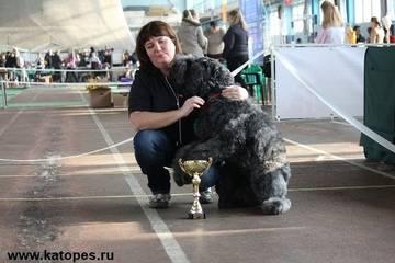 http://s5.uploads.ru/t/K5xTF.jpg