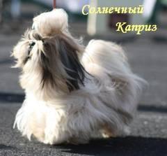 http://s5.uploads.ru/t/Kq1ME.jpg