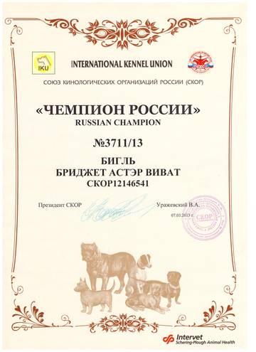 http://s5.uploads.ru/t/KzPcl.jpg