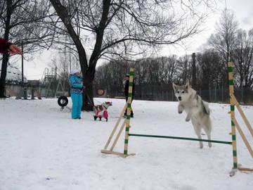 http://s5.uploads.ru/t/LVI9c.jpg