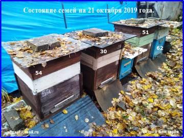 http://s5.uploads.ru/t/LfPNB.jpg