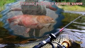 http://s5.uploads.ru/t/LxzRE.jpg