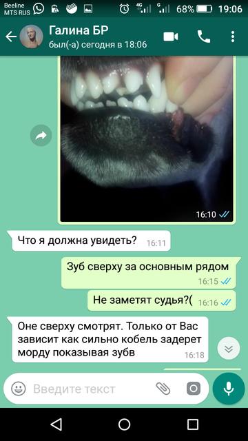 http://s5.uploads.ru/t/NFM2t.png