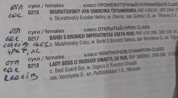 http://s5.uploads.ru/t/NPJnY.jpg