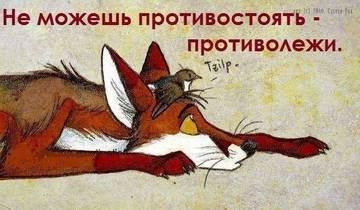 http://s5.uploads.ru/t/O5WDs.jpg