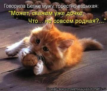 http://s5.uploads.ru/t/OZka1.jpg