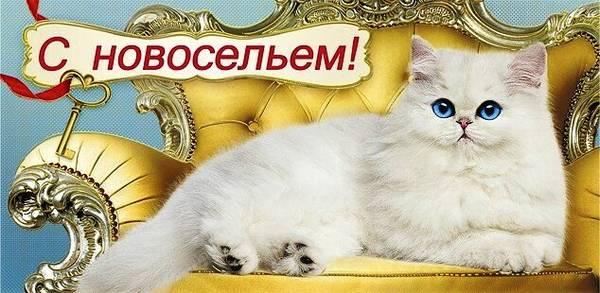http://s5.uploads.ru/t/ObXEV.jpg