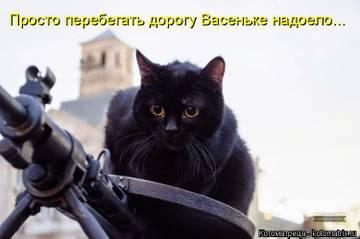 http://s5.uploads.ru/t/Orw6b.jpg