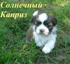 http://s5.uploads.ru/t/OxUJu.jpg