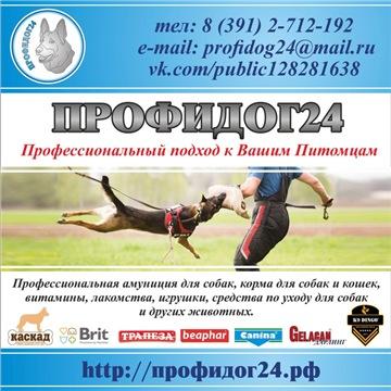 http://s5.uploads.ru/t/PkH8V.jpg