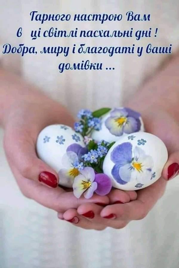 http://s5.uploads.ru/t/QJF1R.jpg