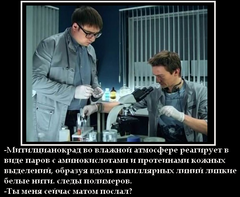 http://s5.uploads.ru/t/RMgl3.png
