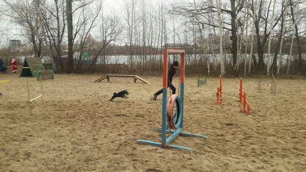 http://s5.uploads.ru/t/Rmlqh.jpg