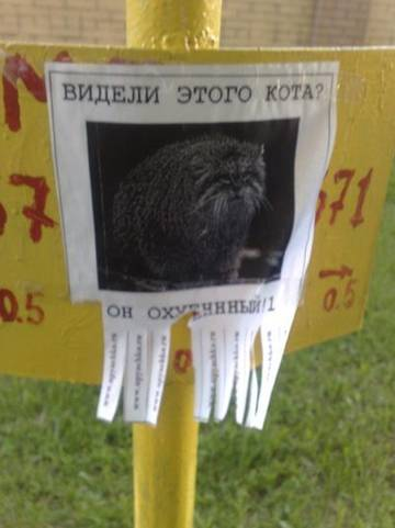 http://s5.uploads.ru/t/S6t4Q.jpg
