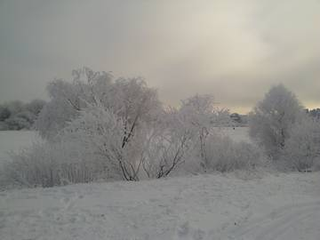 http://s5.uploads.ru/t/Smbc7.jpg