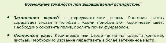 http://s5.uploads.ru/t/T6jNo.jpg