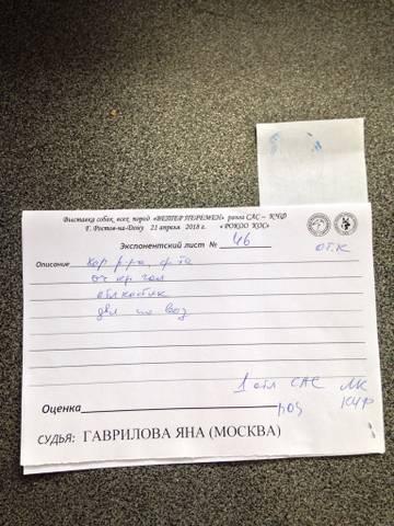http://s5.uploads.ru/t/TPBeb.jpg