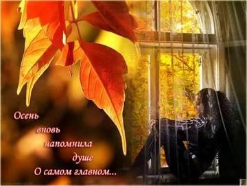 http://s5.uploads.ru/t/U4oWr.jpg