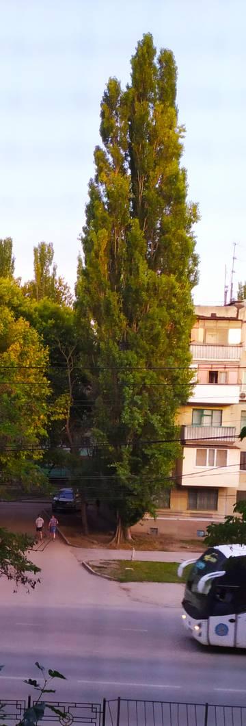 http://s5.uploads.ru/t/U8diW.jpg