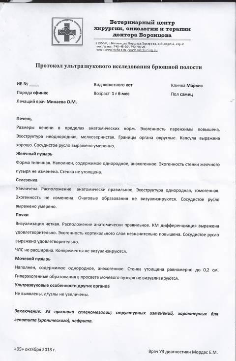 http://s5.uploads.ru/t/Ulihy.jpg