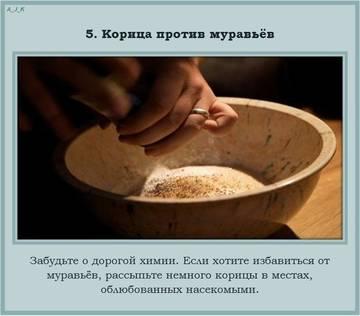 http://s5.uploads.ru/t/UsLlA.jpg