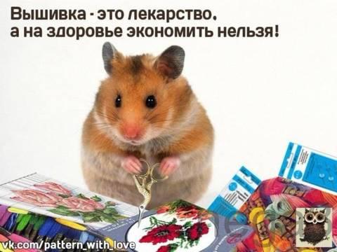 http://s5.uploads.ru/t/UtQ6c.jpg