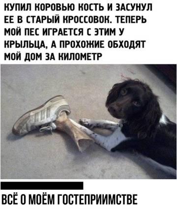 http://s5.uploads.ru/t/V2pCa.jpg