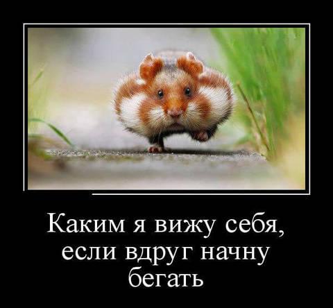 http://s5.uploads.ru/t/VBTE2.jpg
