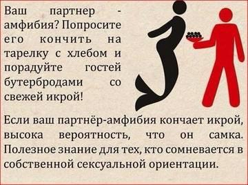 http://s5.uploads.ru/t/VGaDF.jpg