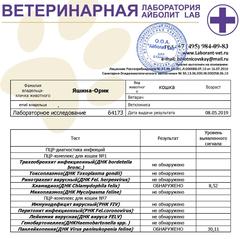 http://s5.uploads.ru/t/VhBQa.png
