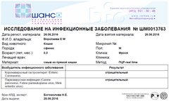 http://s5.uploads.ru/t/VsLmq.png