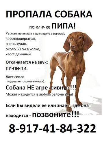 http://s5.uploads.ru/t/VvDNw.jpg