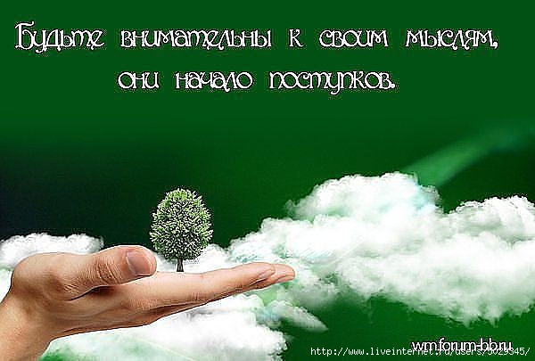 http://s5.uploads.ru/t/X6UrE.jpg