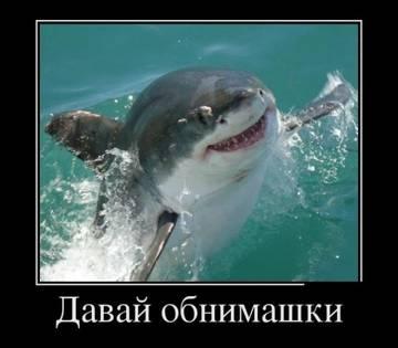http://s5.uploads.ru/t/XQ8du.jpg