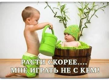 http://s5.uploads.ru/t/XpDjF.jpg