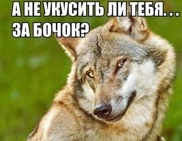 http://s5.uploads.ru/t/YVdN8.jpg