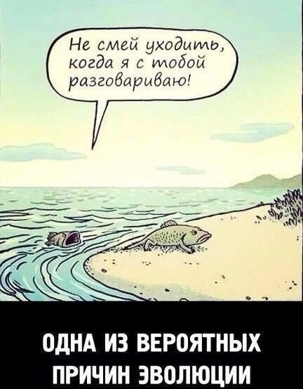 http://s5.uploads.ru/t/YW5Ta.jpg