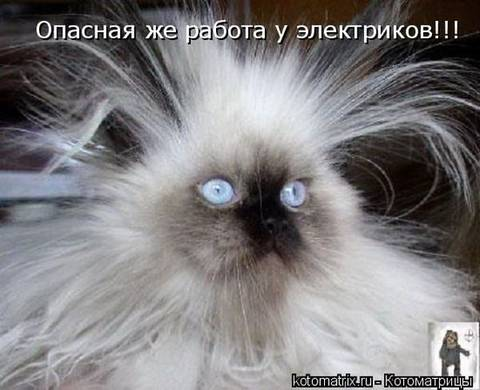 http://s5.uploads.ru/t/afizE.jpg