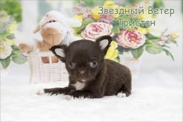http://s5.uploads.ru/t/b8ZKI.jpg